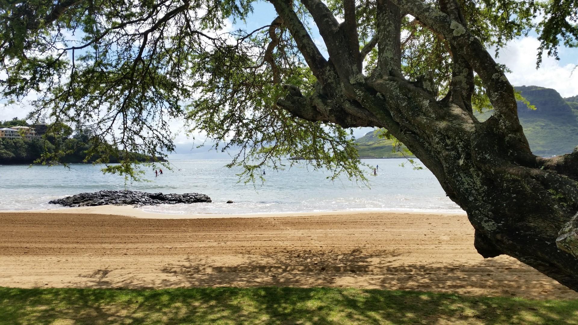 Hawaii Tag 26: Kalapaki Beach, Poipu Beach (2014-10-21)