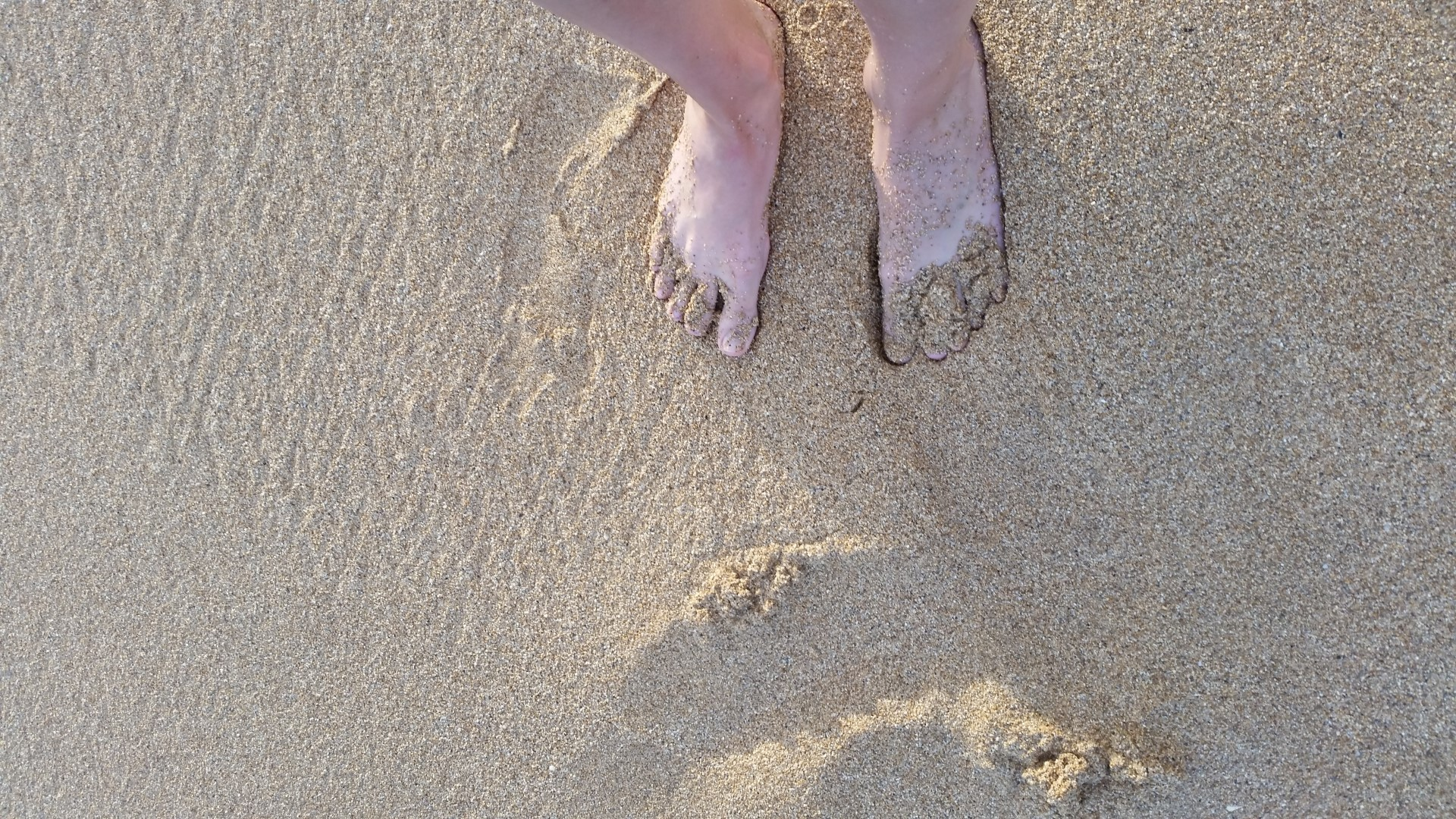 Hawaii Tag 31: Strandtag, Spouting Horn (2014-10-26)