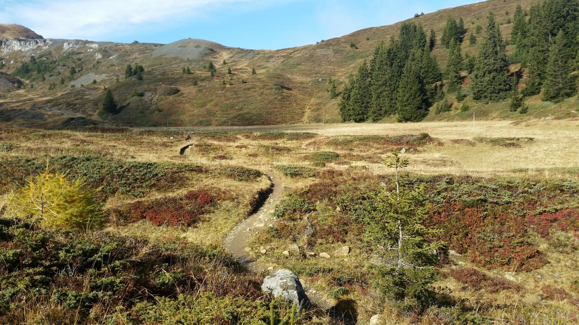 Arosa Weisshorn Gipfel – Eine wunderschöne Herbstwanderung (2015-10-10)