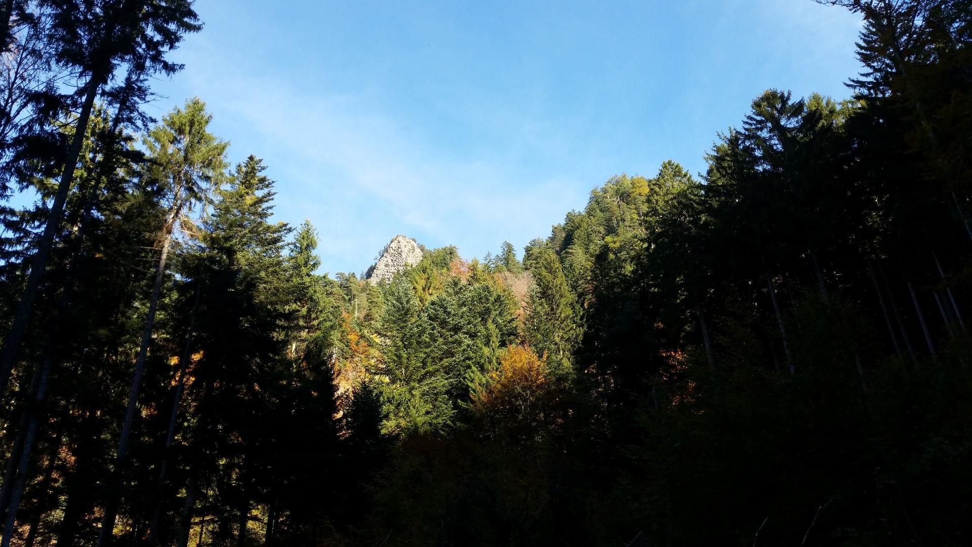 Wanderung zur Rot Platte Chur (2015-10-24)